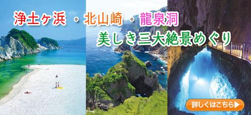 浄土ヶ浜・北山崎・龍泉洞 美しき三大絶景めぐり