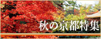 秋の京都特集