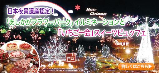 日本夜景遺産認定!「あしかがフラワーパーク」イルミネーションと「いちご一会」スィーツビュッフェ