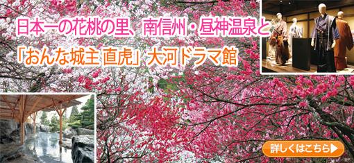 日本一の花桃の里、南信州・昼神温泉と「おんな城主直虎」大河ドラマ館