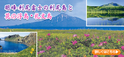 明峰・利尻富士の利尻島と花の浮島・礼文島