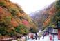 秋色の日本三大峡谷の名勝・清津峡と越後湯沢温泉