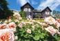 洋館の庭園に咲く薔薇と東京新名所めぐり