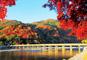 JRで行く 大人の京都 紅葉ふたり旅