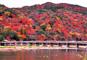 JRで行く 何度でも行きたい 奈良 大阪 京都 紅葉名所めぐり