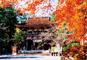 JRで行く 京都御所 比叡山延暦寺と 近江 湖東三山、おごと温泉