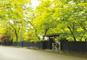 みちのくの小京都「角館」と秋田温泉