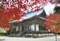 JRで行く 天空の聖地高野山の紅葉と秋めく京都3日間