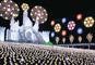 光の祭典!あしかがフラワーパークイルミネーションと日光東照宮華麗なる彫刻「陽明門」