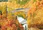 紅葉の絶景秘境!只見線乗車とあがらんしょ、東鳳グルメバイキング