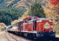 紅葉の名所を巡る わたらせ渓谷鐡道トロッコ列車と富弘美術館