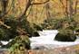 東北の耶馬溪「抱返り渓谷」と十和田湖、奥入瀬渓流