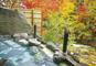 世界遺産「日光東照宮」参拝と秘境・湯西川温泉