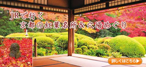 JRで行く 京都の紅葉名所&穴場めぐり