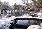 永平寺参拝と冬の絶景・東尋坊、古都金沢のお正月