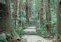 世界遺産「紀伊山地の霊場と参詣道」熊野三山めぐり